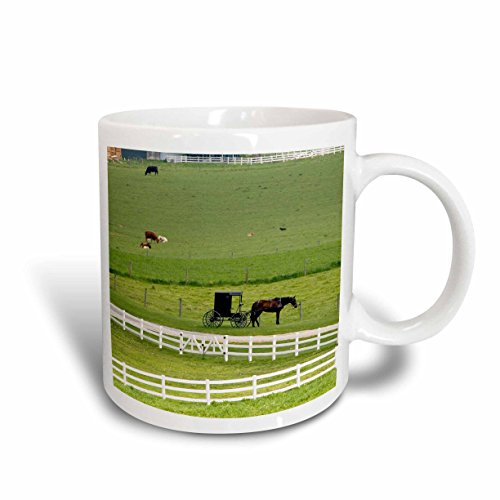 3dRose Amish Farm with Horse Buggy Near Berlin, Ohio US36 DFR0008 David R. Frazier Mug, 11-Ounce