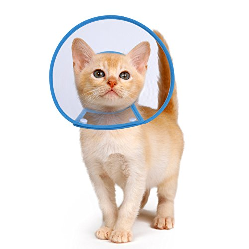 - PETBABA Cat Cone Collar in Recovery, Clear Elizabethan Not Block Vision, Soft Padded E-Collar Protect Neck, Suitable Kitten Puppy Dog Pet in Surgery Remedy Grooming - S in Blue