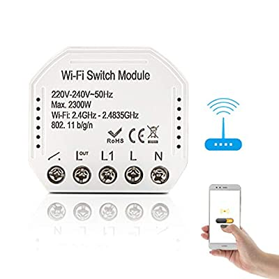 Smart Wifi Switch Module, Smart Remote Wifi Switch Compatible with Google Home and Alexa, IFTTT, Support Voice Control and Setting Schedule Timer, No Hub Required