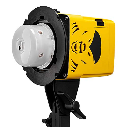 Interfit Badger Unleashed 250Ws Compact Flash Head