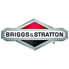 "Briggs and Stratton 7101304YP Grassbag, 21"" Rear Discharge"