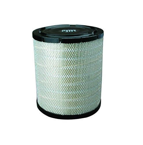 Donaldson P527682 Air Filter, Primary by Donaldson