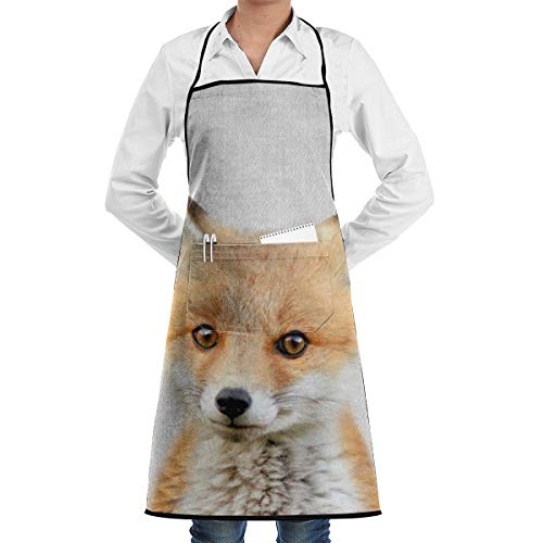 LALACO-Design Baby Fox Colorful Cooking Women Kicthen Bib Aprons with Pockets for Chef,Grandma Suitable for Baking,Grilling,Painting Even Fit for Arts,Holiday]()