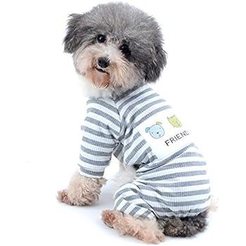 Popular Grey Chubby Adorable Dog - 41-VMV73rgL  2018_789425  .jpg