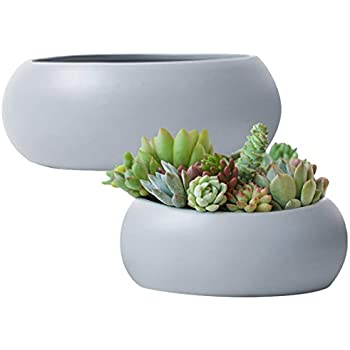 Amazon Com Modern Unglazed Round Ceramic Succulent Cactus