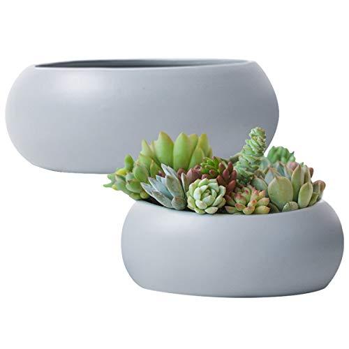 Succulent Plant Pots Ceramic Round - 2 Pack Cactus Container Grey 10.6