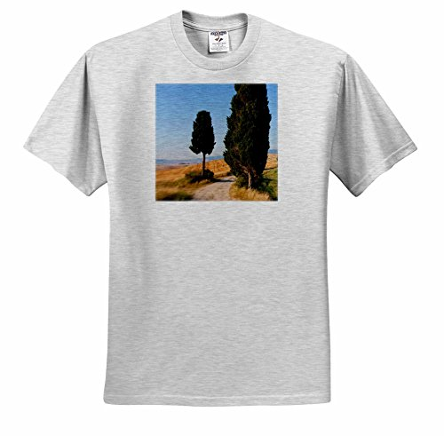 danita-delimont-italy-winding-road-val-d-orica-tuscany-italy-t-shirts-youth-birch-gray-t-shirt-large