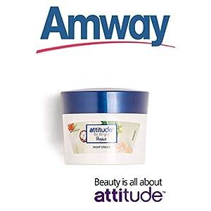 Amway Attitude Be Bright Herbals Night Cream