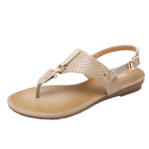 DDLBiz Women's Fashion Metal Decorated Buckle Strap Flip Sandals Beach Shoes (US:6.5(23.6-24CM), Coffee)