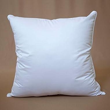 De Lux - 20  x 20  Square Premium Cluster Fiber Pillow Filler Insert Cotton Covered - Machine Washable