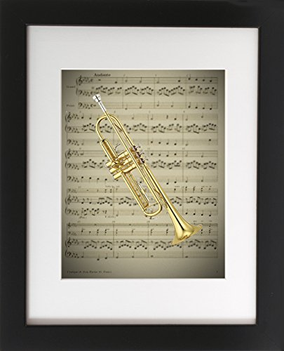 Trumpet on Sheet Music. Framed & Matted in 8