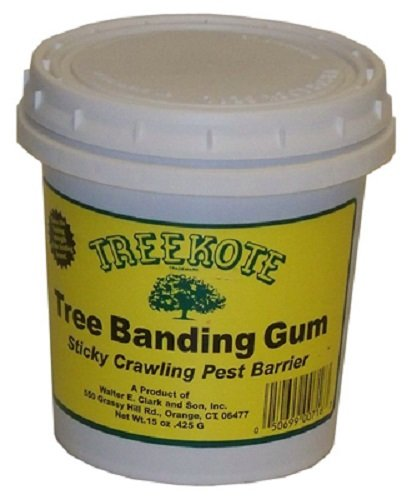 (Treekote 300716 15 oz Tree Banding Sticky Gum Crawling Insect Barrier - Quantity 5)