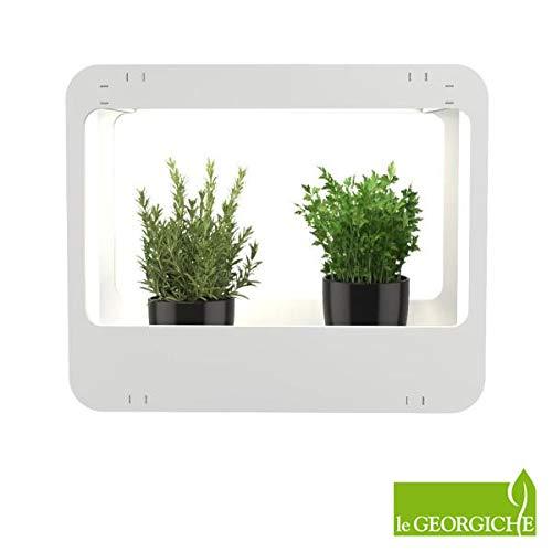 vendite dirette della fabbrica Mini Mini Mini Serra HOME GARDEN con lampade a LED  tempo libero
