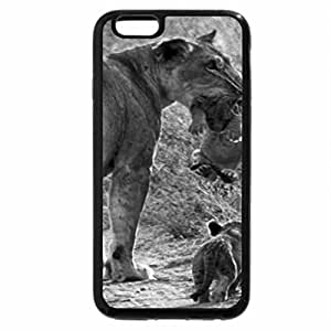 iPhone 6S Plus Case, iPhone 6 Plus Case (Black & White) - Why does he get a ride