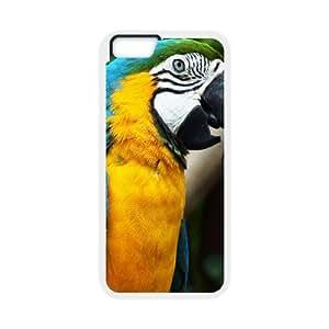 IPhone 6 Plus Cases Beautiful Parrot, [White]