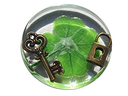 KIN-HEBI Real Four Leaf Clover Good Luck Pocket Token, Preserved, Including Metallic Lock and Key Objects, 1.25