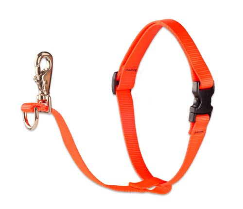 lupine dog harness 1 2 - 1