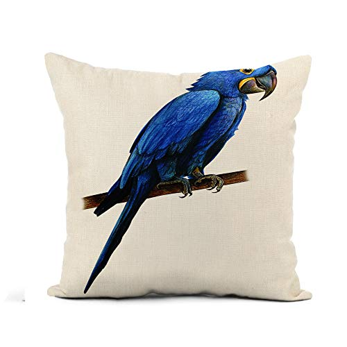 (Awowee Flax Throw Pillow Cover Blue Parrot Hyacinth Macaw Drawing Anodorhynchus Hyacinthinus Tropical Ara 18x18 Inches Pillowcase Home Decor Square Cotton Linen Pillow Case Cushion Cover )