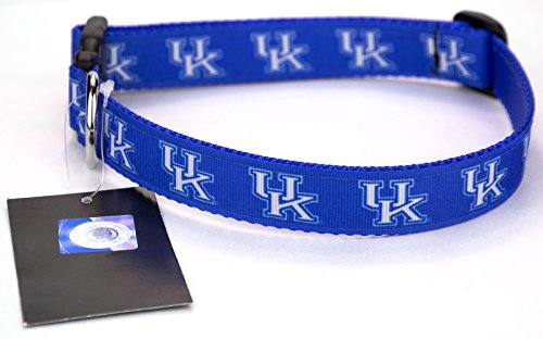All Star Dogs Blue Kentucky Wildcats Ribbon Dog Collar - Small