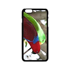 My Lovely Parrot Pet Hight Quality Plastic Case for Iphone 6