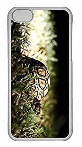 iPhone 5C Case, Personalized Custom Turtle for iPhone 5C PC Clear Case
