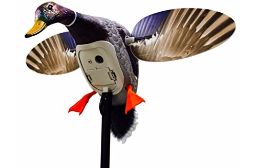 MOJO Outdoors Mojo King Mallard Spinning Wing Duck Decoy (New for 2017)
