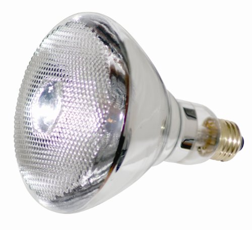 Long Lasting Flood Light Bulbs