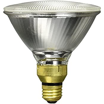 Outdoor Halogen Light Bulbs Brinks 7073 2 bulb 70w halogen outdoor 1310 lumens light 2 pack sylvania 14577 capsylite par38 90 watt 130 v flood beam tungsten halogen reflector bulb workwithnaturefo