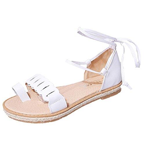 FEITONG Sandalias Mujer Nuevo Caliente Moda Sandalias de verano Oficina Tacón bajo Casual Lace-Up Zapatos Blanco