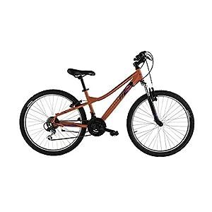 "41 Y%2BuJ2GZL. SS300 Alpina Bike, Bicicletta Ragazzo Flip MTB 26"""