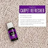 Lavender Essential Oil by Young Living, 15