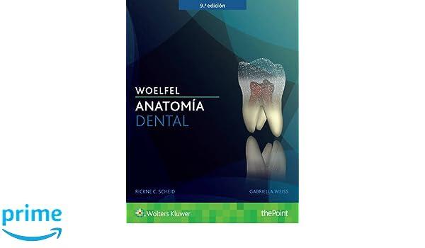 Woelfel. Anatomía dental: Amazon.es: Rickne C. Scheid, Gabriela ...