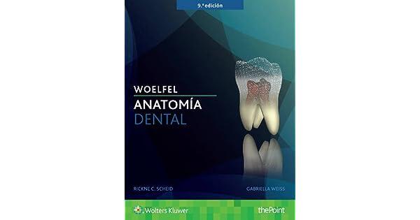 Woelfel. Anatomía dental: Rickne C. Scheid DDS, Gabriela Weiss DDS ...