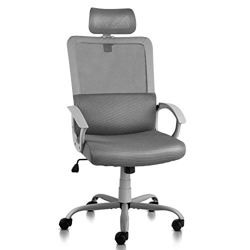 Ergonomic Office Chair Adjustable Headrest Mesh Office Chair Office Desk Chair Computer Task Chair (Light Gray) (Gray) (Best Computer Chair For Long Hours)