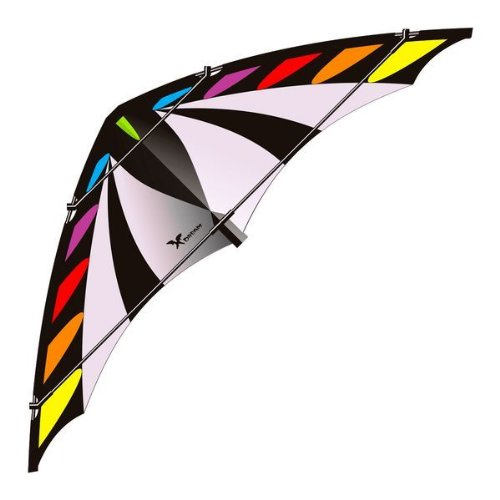 Lenkdrachen Kite 2-Leiner X - Dream R2F Rainbow / Schwarz / Grau Elliot