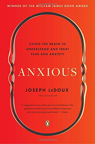 Anxious Using Brain Understand Anxiety