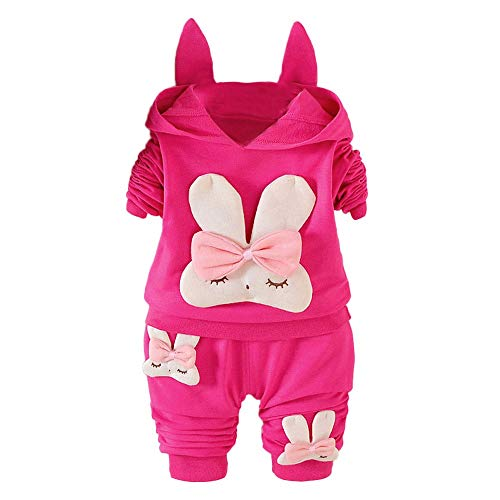 kaiCran Toddler Infant Baby Rabbit Long Sleeve Hoodie Tops Sweatsuit Pants Outfit Set for Baby Girls (Hot Pink, 80(6-12 Months))