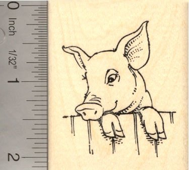 amazon com cute pig looking over fence rubber stamp arts crafts