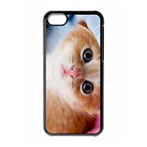 DIY Cover Case with Hard Shell Protection for Iphone 5C case with Stay Meng cat lxa#468517