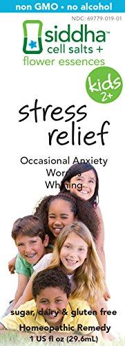 Siddha Kid-Stress Relief Supplement, 1 Fluid Ounce