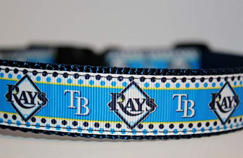 (Tampa Bay Rays Dog Collar | Baseball Dog Collar | Rays Dog Collar | MLB Dog Collar | Adjustable Dog Collar | Sport Dog Collars | Dogs)