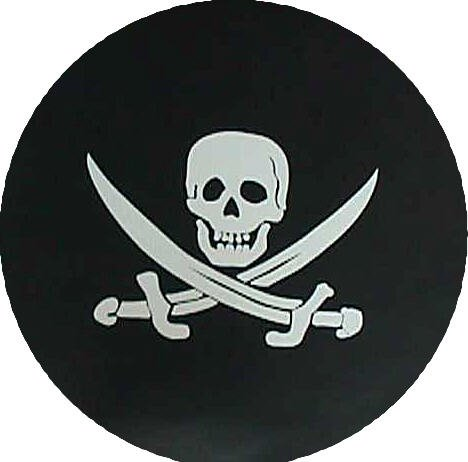 Sabers and Skull Tire Cover on Black Vinyl Size: Z - 33 x 12