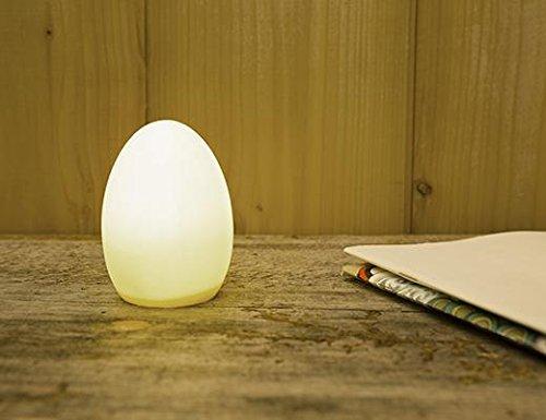 Kikkerland LT16 Egg Light Desk Lamp