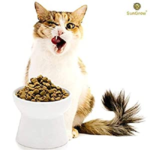 Cat Bowl with Stand – Suitable Eating Height for Pets – Easy Cleaning for You – Eco-Friendly, Raised Food Bowl – Stress-Free Meal time for Your Cats – Stoneware Feeding Station