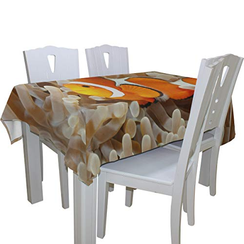 (Fenda Clown Fish Anemone and Clown 100% Polyester Tablecloth Printed Dining Room Kitchen Rectangular Round Table Cover Tabletop Decor 60x108 Inch Washable)