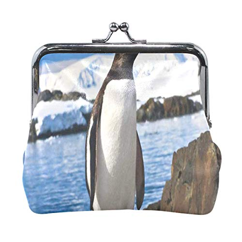 Coin Purse Penguin Stone Coast Mountains Womens Wallet Clutch Bag Girls Small Purse