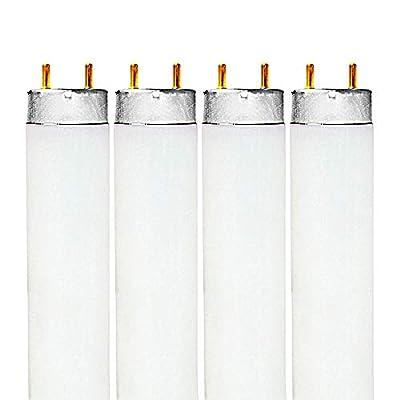 Luxrite F32T8/741 32W 48 Inch T8 Fluorescent Tube Light Bulb, 4100K Cool White, 2850 Lumens, G13 Medium Bi-Pin Base, LR20732