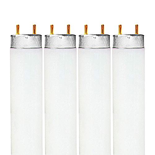 Luxrite F32T8/765 32W 48 Inch T8 Fluorescent Tube Light Bulb, 6500K Daylight White, 2650 Lumens, G13 Medium Bi-Pin Base, LR20735, 4-Pack