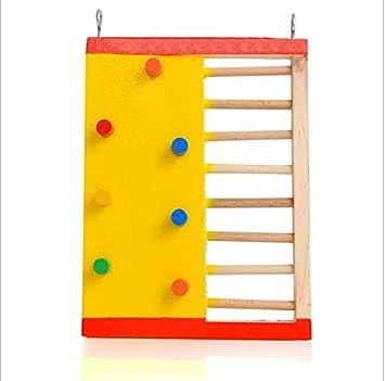Hamster Play Toy Escalera de escalada divertida, colorida: Amazon.es: Bricolaje y herramientas