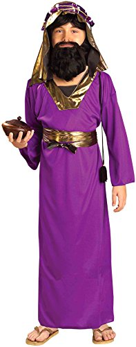 Forum Novelties Biblical Times Purple Wiseman Child Costume, Medium